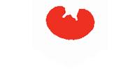 Diesichtraut Hochzeitsfotograf Logo